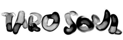 tarosoul_logo.jpg